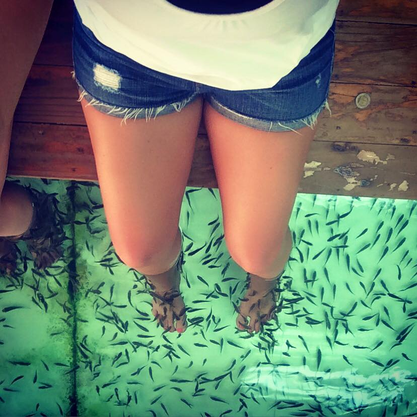 Fish Pedicure in Bangkok Thailand