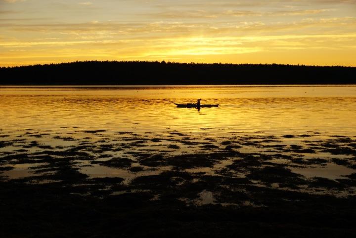 Solo Golden Kayak Floods Cove, Maine